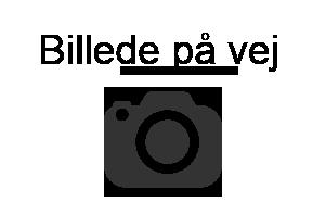 Lone Sjørup